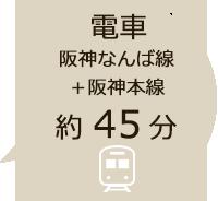電車で約40分